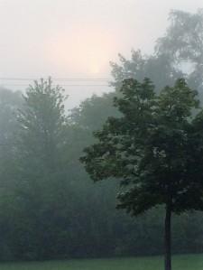 August sun through fog